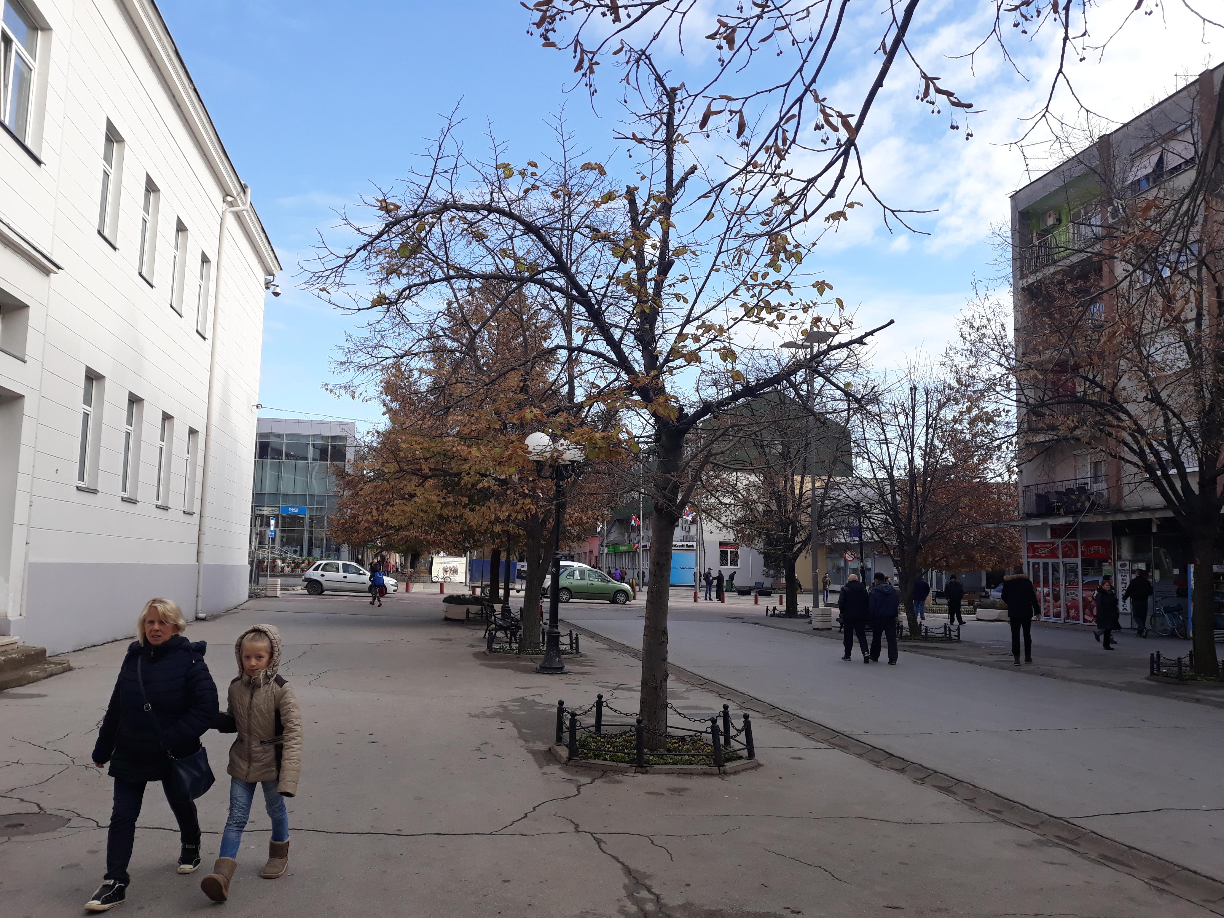 Briga o đacima i studentima prioritet opštine Inđija