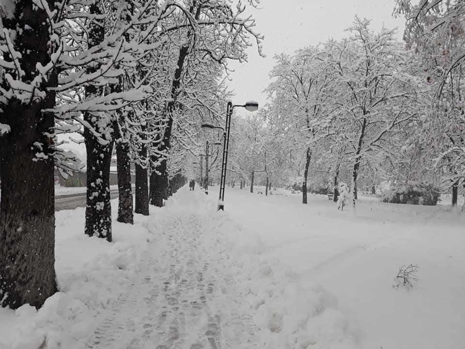 Zimska idila u Inđiji
