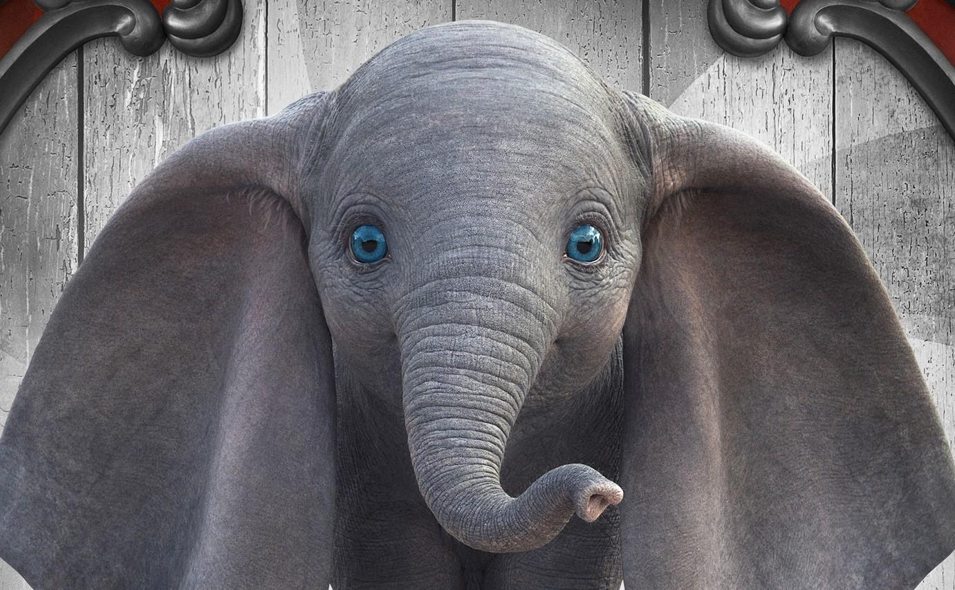 """Omiljeno slonče našeg detinjstva: Igrani film """"DAMBO"""" u inđijskom bioskopu"""