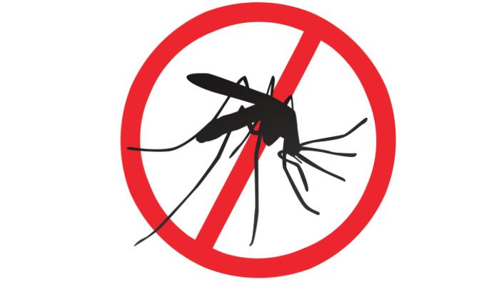 DANAS Tretiranje komaraca u Novim Karlovcima, Novom Slankamenu, Jarkovcima i Inđiji