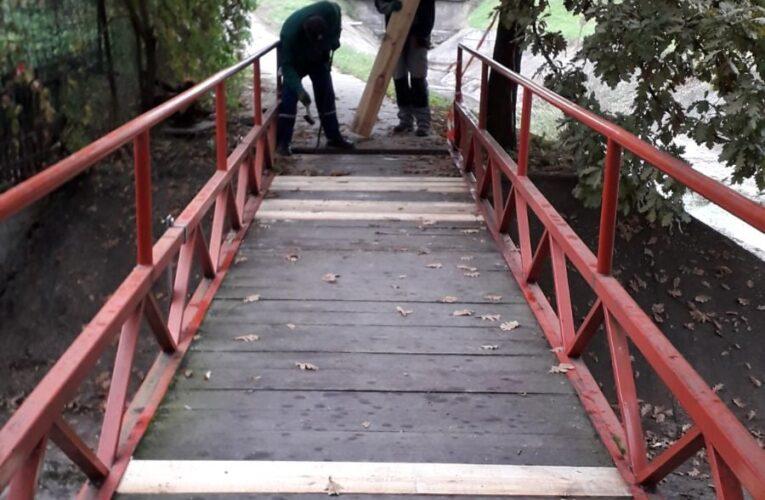 Saniran mostić kod zoološkog vrta