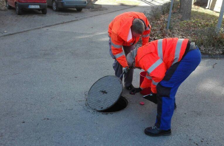 Besplatna jesenja deratizacija za građane opštine Inđija