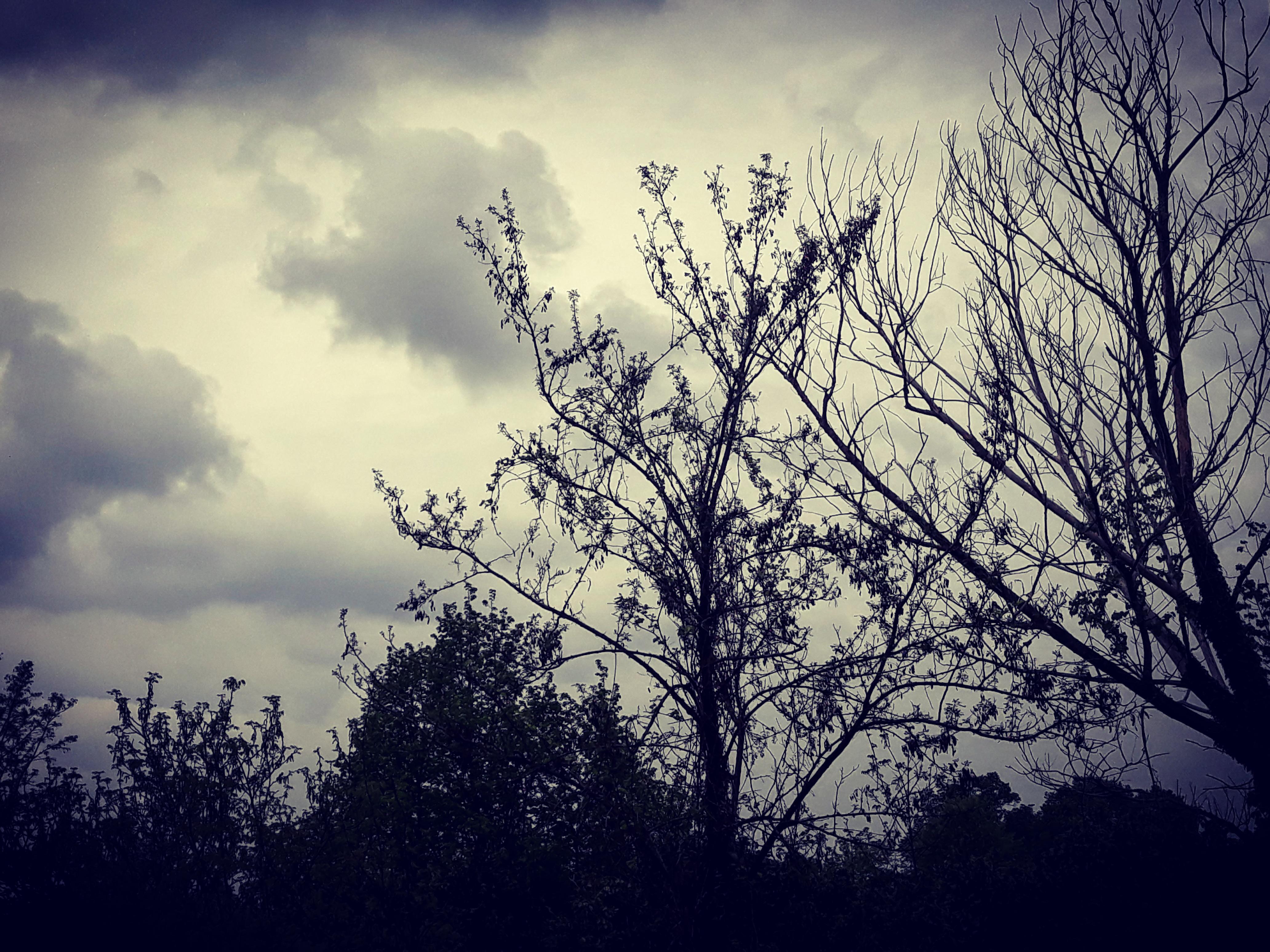 VREMENSKA PROGNOZA: Spremite kišobrane narednih sedam dana
